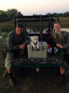 Dove hunting!